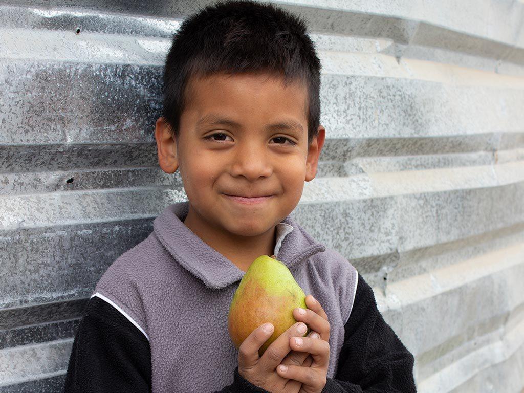 diferencia-entre-desnutricion-y-hambre