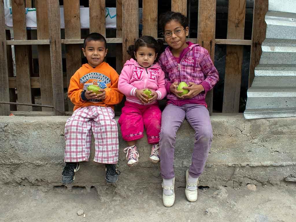 Ayúdanos a dar apoyo alimentario a los afectados por la crisis del COVID-19