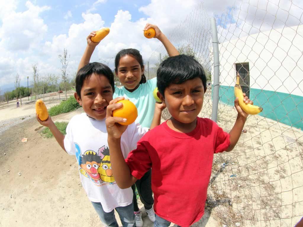 Forjamos un sistema alimentario para ayudar a los más vulnerables