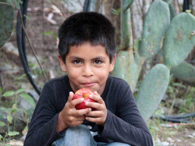 Hambre Cero en México: ¿cómo vamos con la meta de poner fin al hambre?